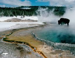 Yellowstone2